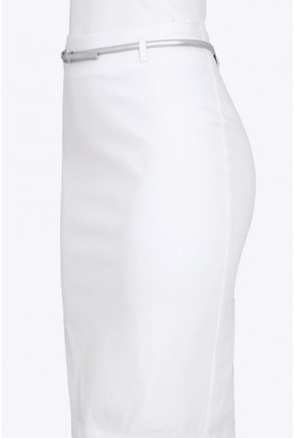 Юбка Emka Fashion 656-veselina